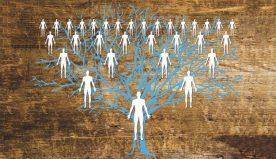 L'albero genealogico digitale: interessante progetto di un gruppo di ricercatori americani