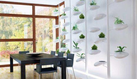 Alcune idee originali per creare un giardino in casa
