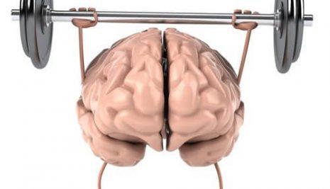 L'importanza di tenereallenata la mente: ecco come si può