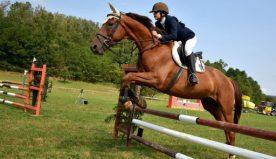 Equitazione, cosa occorre per praticare questo sport