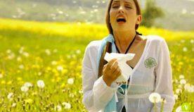 Sintomi allergia: come si riconoscono in base al tipo di allergia