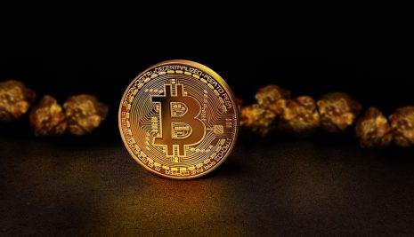 Importante da sapere – Svantaggi dell'investimento in Bitcoin